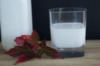 Козий йогурт натуральный